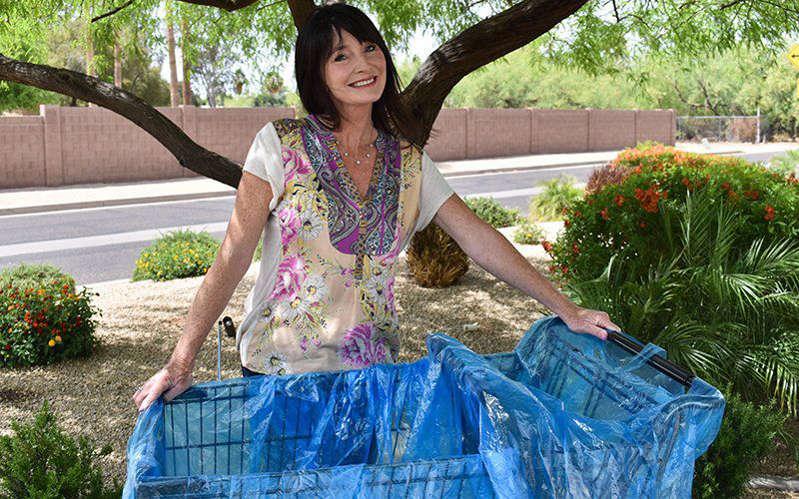 Andi Barness-Rubin demonstrates the Cart Safe liner